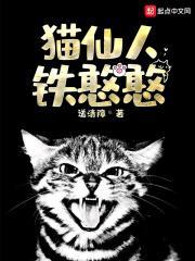 猫仙人铁憨憨