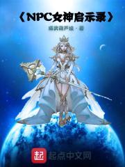 NPC女神启示录