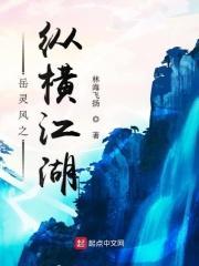 岳灵风之纵横江湖